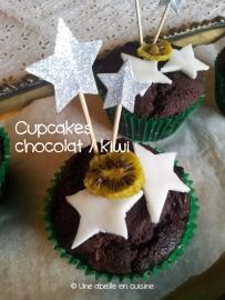 cupcakes chocolat / kiwi