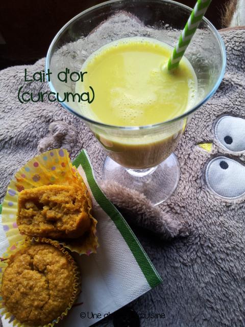 lait-dor-au-curcuma-copie