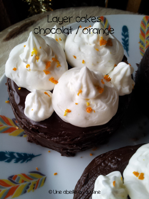 layer-cake-chocolat-orange-2-copie