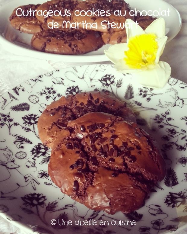 outrageous cookies copie