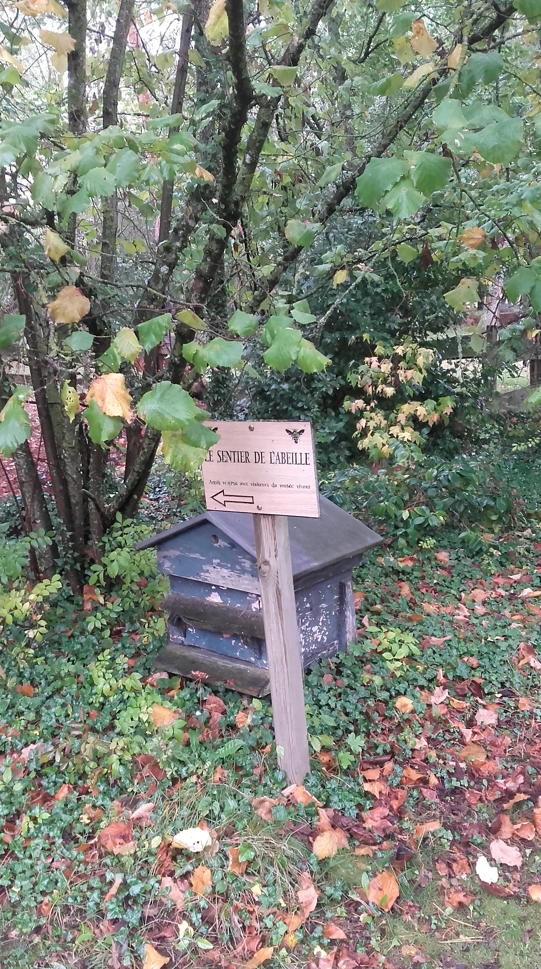 Musée vivant de l'apiculture: sentier de l'abeille