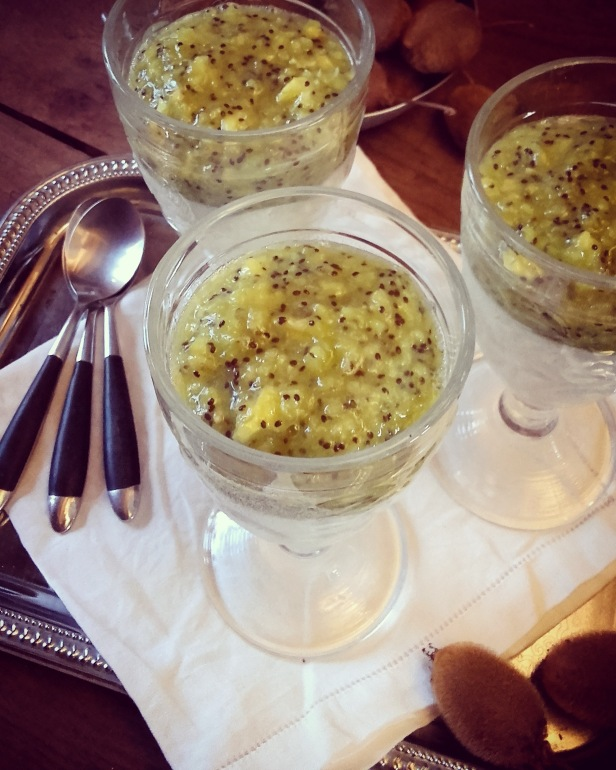 blanc-manger et coulis de kiwi