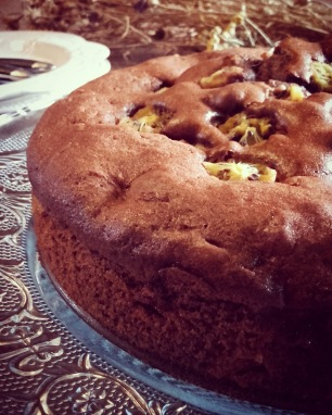 Gâteau moelleux chocolat kiwi